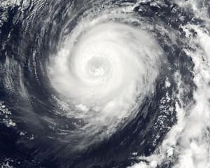 Typhoon Man-Yi, 2001