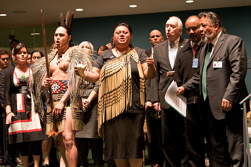 UN Forum on Indigenous Issues 2010