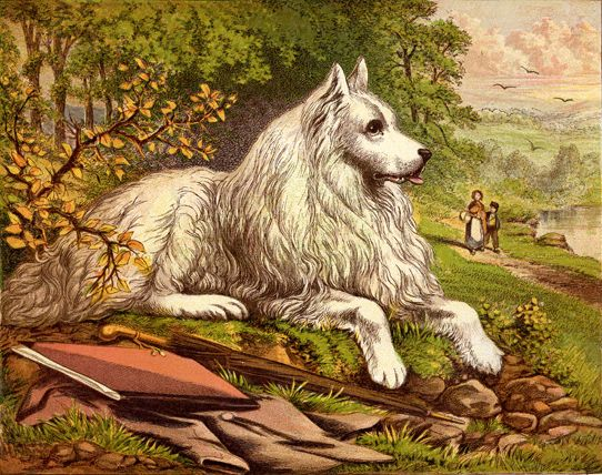 White Dog lithograph